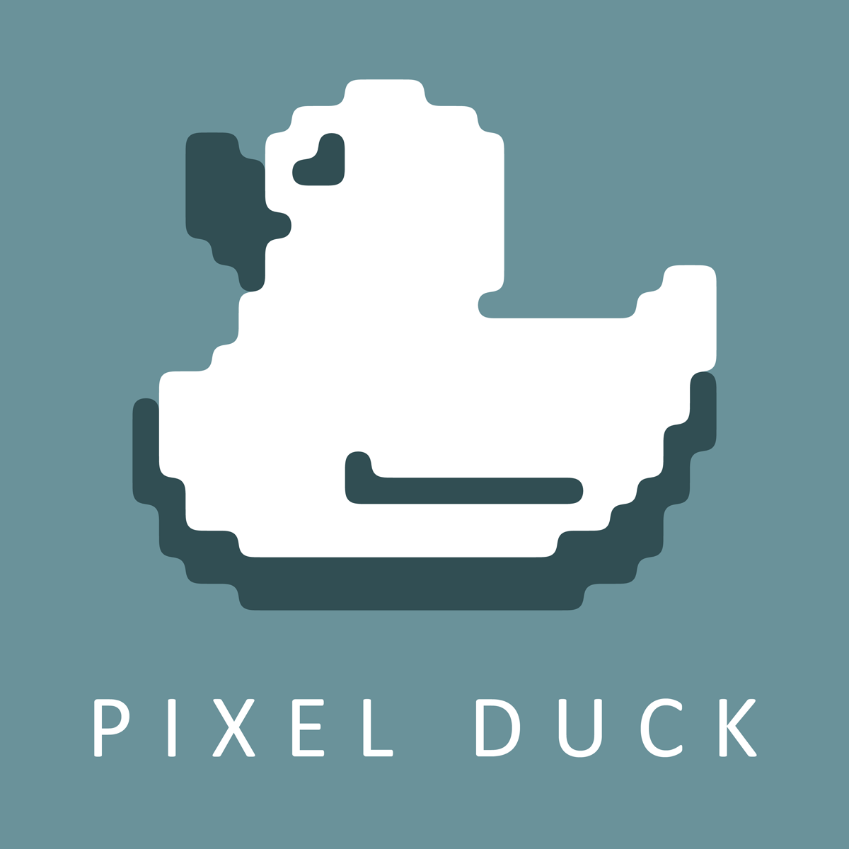 Website Design Company Logo - logo design by PixelDuck
